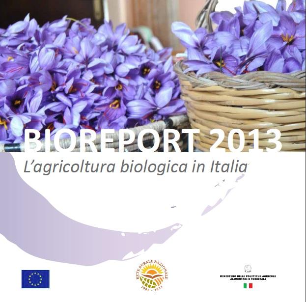 bioreport